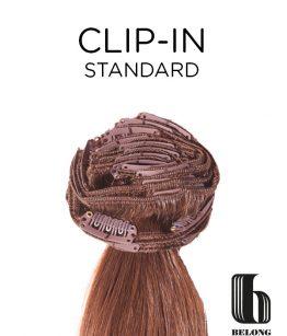 Clip-in